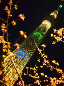 skytree-lightup07