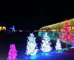 神戸 クリスマス